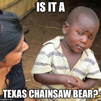 Third World Skeptical Kid Meme | IS IT A TEXAS CHAINSAW BEAR? | image tagged in memes,third world skeptical kid | made w/ Imgflip meme maker