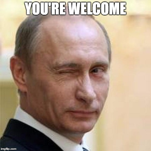 Putin Wink | YOU'RE WELCOME | image tagged in putin wink | made w/ Imgflip meme maker