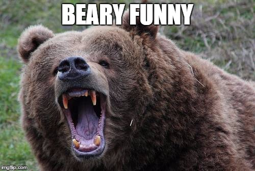 BEARY FUNNY | made w/ Imgflip meme maker