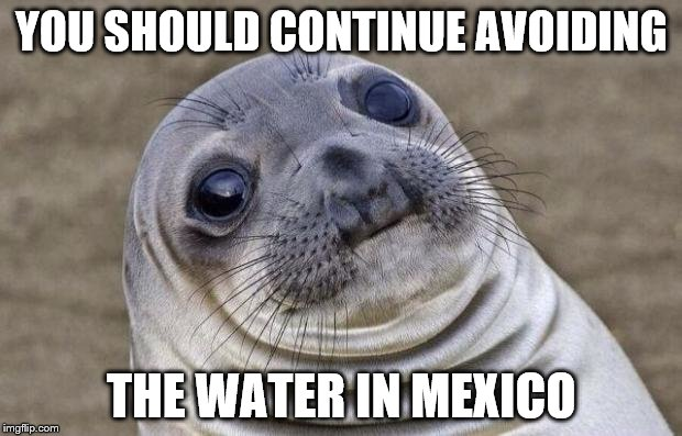 Awkward Moment Sealion Meme | YOU SHOULD CONTINUE AVOIDING THE WATER IN MEXICO | image tagged in memes,awkward moment sealion | made w/ Imgflip meme maker