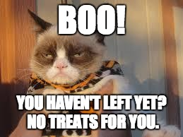Grumpy Cat Halloween | BOO! YOU HAVEN'T LEFT YET? NO TREATS FOR YOU. | image tagged in memes,grumpy cat halloween,grumpy cat | made w/ Imgflip meme maker