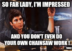 SO FAR LADY, I'M IMPRESSED AND YOU DON'T EVEN DO YOUR OWN CHAINSAW WORK ! YAHBLE | made w/ Imgflip meme maker