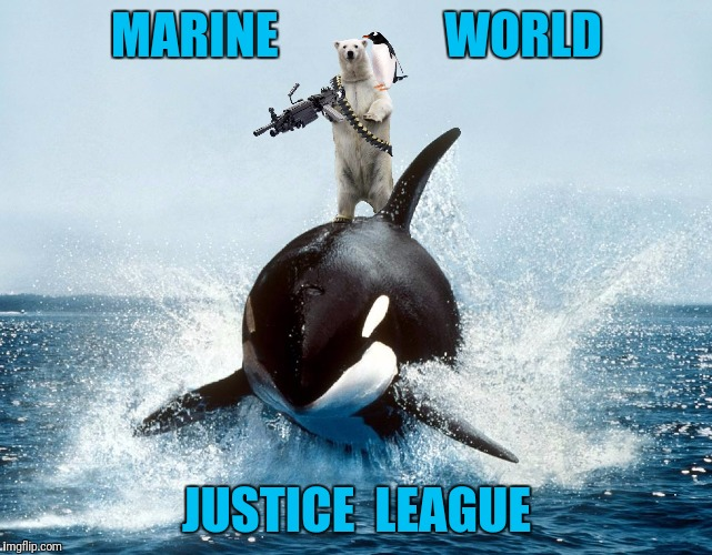 They broke out of Marine World and they're not happy | MARINE                 WORLD JUSTICE  LEAGUE | image tagged in memes,killer whale,polar bear,penguin,page 9 party | made w/ Imgflip meme maker