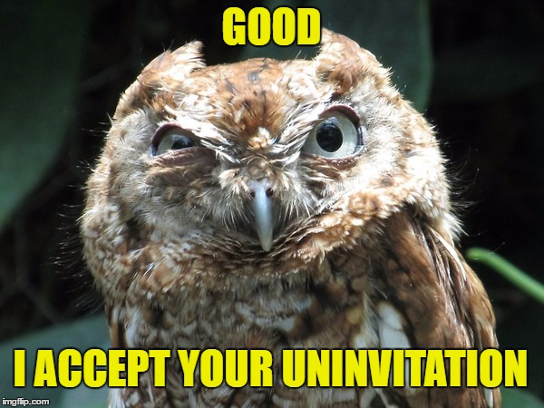 GOOD I ACCEPT YOUR UNINVITATION | image tagged in ornery owl | made w/ Imgflip meme maker