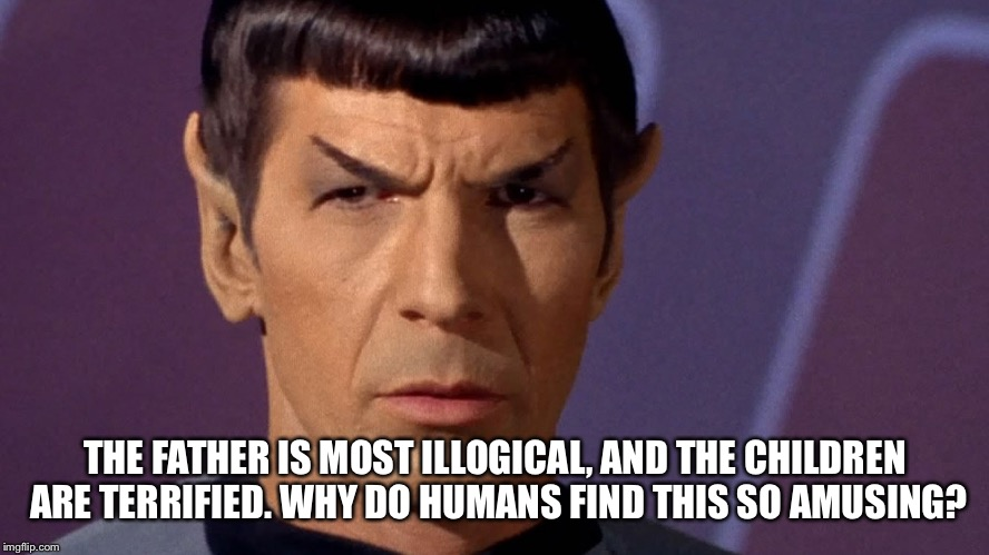 Spock Is Serious | THE FATHER IS MOST ILLOGICAL, AND THE CHILDREN ARE TERRIFIED. WHY DO HUMANS FIND THIS SO AMUSING? | image tagged in spock is serious | made w/ Imgflip meme maker