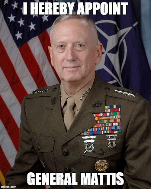 I HEREBY APPOINT GENERAL MATTIS | made w/ Imgflip meme maker