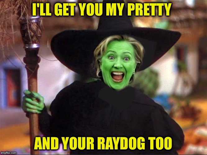 I'LL GET YOU MY PRETTY AND YOUR RAYDOG TOO | made w/ Imgflip meme maker