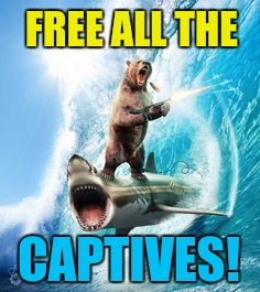 FREE ALL THE CAPTIVES! | made w/ Imgflip meme maker