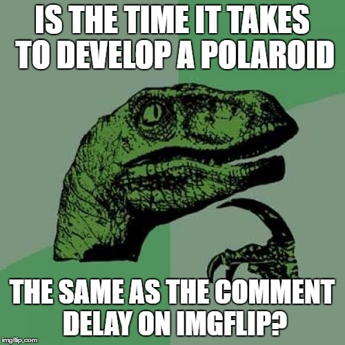 Philosoraptor Meme | IS THE TIME IT TAKES TO DEVELOP A POLAROID THE SAME AS THE COMMENT DELAY ON IMGFLIP? | image tagged in memes,philosoraptor | made w/ Imgflip meme maker