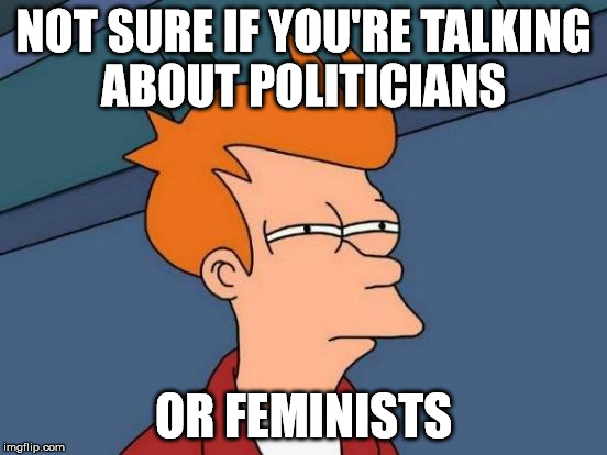 Futurama Fry Meme | NOT SURE IF YOU'RE TALKING ABOUT POLITICIANS OR FEMINISTS | image tagged in memes,futurama fry | made w/ Imgflip meme maker