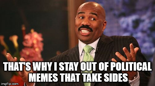 Steve Harvey Meme | THAT'S WHY I STAY OUT OF POLITICAL MEMES THAT TAKE SIDES | image tagged in memes,steve harvey | made w/ Imgflip meme maker