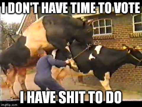 I DON'T HAVE TIME TO VOTE I HAVE SHIT TO DO | made w/ Imgflip meme maker