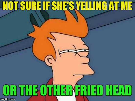 Futurama Fry Meme | NOT SURE IF SHE'S YELLING AT ME OR THE OTHER FRIED HEAD | image tagged in memes,futurama fry | made w/ Imgflip meme maker
