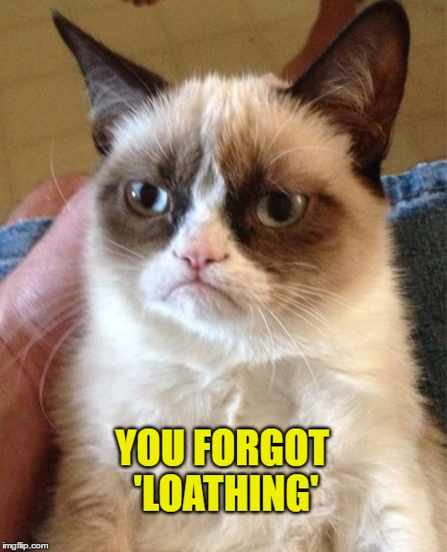 Grumpy Cat Meme | YOU FORGOT 'LOATHING' | image tagged in memes,grumpy cat | made w/ Imgflip meme maker