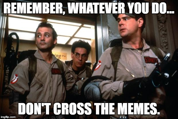ghostbusters | REMEMBER, WHATEVER YOU DO... DON'T CROSS THE MEMES. | image tagged in ghostbusters | made w/ Imgflip meme maker