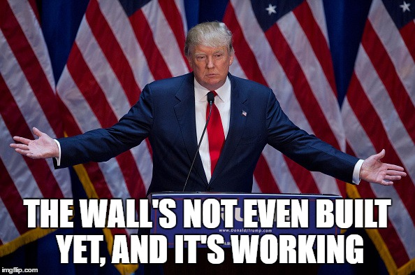 Trump Bruh | THE WALL'S NOT EVEN BUILT YET, AND IT'S WORKING | image tagged in trump bruh | made w/ Imgflip meme maker