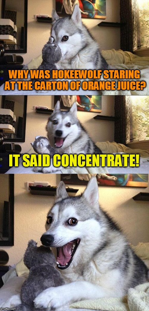 Bad Pun Dog Meme | WHY WAS HOKEEWOLF STARING AT THE CARTON OF ORANGE JUICE? IT SAID CONCENTRATE! | image tagged in memes,bad pun dog | made w/ Imgflip meme maker