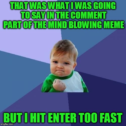 Success Kid Meme | THAT WAS WHAT I WAS GOING TO SAY IN THE COMMENT PART OF THE MIND BLOWING MEME BUT I HIT ENTER TOO FAST | image tagged in memes,success kid | made w/ Imgflip meme maker
