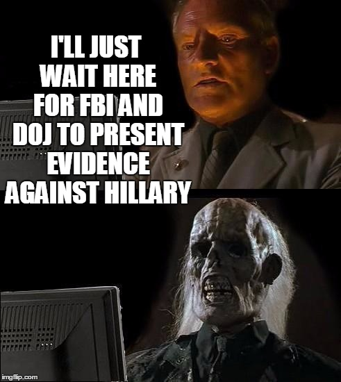 Stop chasing wild geese,  guys! | I'LL JUST WAIT HERE FOR FBI AND DOJ TO PRESENT EVIDENCE AGAINST HILLARY | image tagged in memes,ill just wait here | made w/ Imgflip meme maker