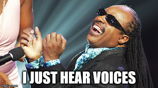 Stevie Wonder Laughing | I JUST HEAR VOICES | image tagged in stevie wonder laughing | made w/ Imgflip meme maker