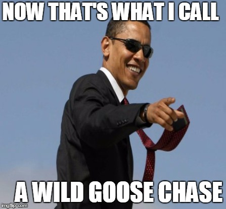 NOW THAT'S WHAT I CALL A WILD GOOSE CHASE | made w/ Imgflip meme maker