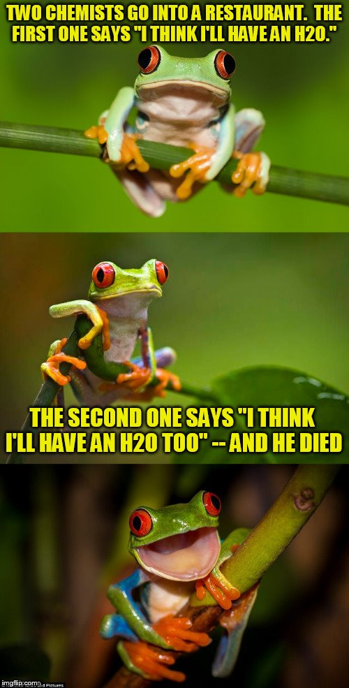 "Frog Puns | TWO CHEMISTS GO INTO A RESTAURANT.  THE FIRST ONE SAYS ""I THINK I'LL HAVE AN H2O."" THE SECOND ONE SAYS ""I THINK I'LL HAVE AN H2O TOO"" -- AND 