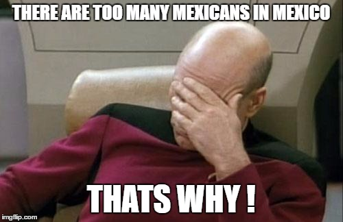 Captain Picard Facepalm Meme | THERE ARE TOO MANY MEXICANS IN MEXICO THATS WHY ! | image tagged in memes,captain picard facepalm | made w/ Imgflip meme maker