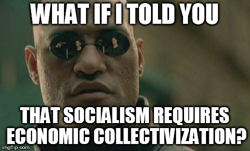 Matrix Morpheus Meme | WHAT IF I TOLD YOU THAT SOCIALISM REQUIRES ECONOMIC COLLECTIVIZATION? | image tagged in memes,matrix morpheus | made w/ Imgflip meme maker