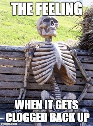 Waiting Skeleton Meme | THE FEELING WHEN IT GETS CLOGGED BACK UP | image tagged in memes,waiting skeleton | made w/ Imgflip meme maker