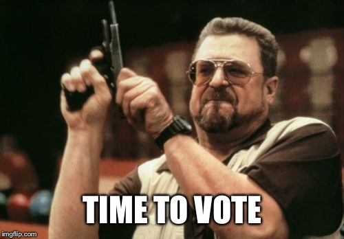 Am I The Only One Around Here Meme | TIME TO VOTE | image tagged in memes,am i the only one around here | made w/ Imgflip meme maker