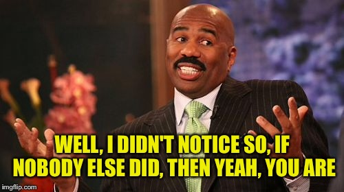 Steve Harvey Meme | WELL, I DIDN'T NOTICE SO, IF NOBODY ELSE DID, THEN YEAH, YOU ARE | image tagged in memes,steve harvey | made w/ Imgflip meme maker
