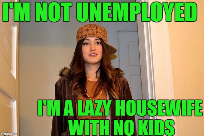 I'M NOT UNEMPLOYED I'M A LAZY HOUSEWIFE WITH NO KIDS | image tagged in scumbag stephanie | made w/ Imgflip meme maker