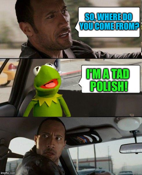 The Rock Driving | SO, WHERE DO YOU COME FROM? I'M A TAD POLISH! | image tagged in kermit rocks,memes | made w/ Imgflip meme maker