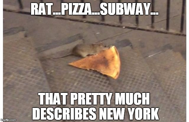 New York In One Picture Imgflip