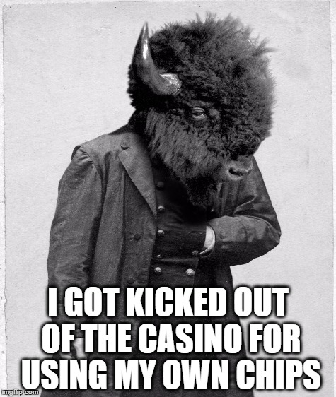 He Took A Gamble And Lost | I GOT KICKED OUT OF THE CASINO FOR USING MY OWN CHIPS | image tagged in casino,gambling,buffalo,puns | made w/ Imgflip meme maker