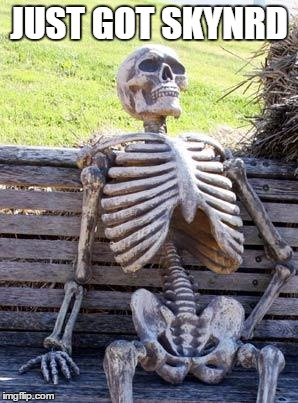 Waiting Skeleton Meme | JUST GOT SKYNRD | image tagged in memes,waiting skeleton | made w/ Imgflip meme maker