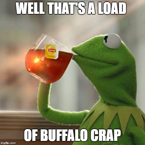 But Thats None Of My Business Meme | WELL THAT'S A LOAD OF BUFFALO CRAP | image tagged in memes,but thats none of my business,kermit the frog | made w/ Imgflip meme maker