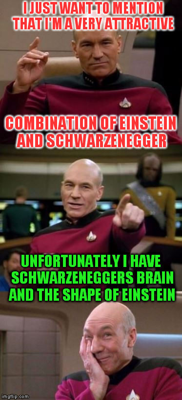 Picard Pun | I JUST WANT TO MENTION THAT I'M A VERY ATTRACTIVE COMBINATION OF EINSTEIN AND SCHWARZENEGGER UNFORTUNATELY I HAVE SCHWARZENEGGERS BRAIN AND  | image tagged in picard pun | made w/ Imgflip meme maker