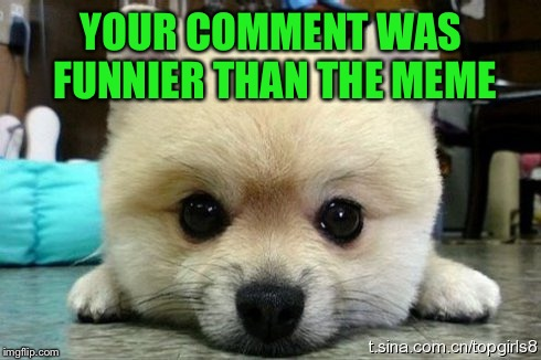 YOUR COMMENT WAS FUNNIER THAN THE MEME | made w/ Imgflip meme maker