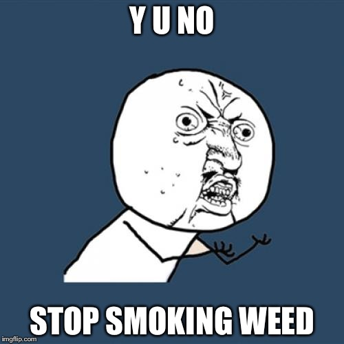 Y U No Meme | Y U NO STOP SMOKING WEED | image tagged in memes,y u no | made w/ Imgflip meme maker