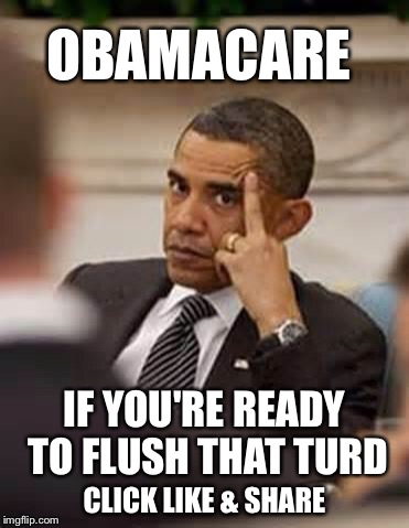 With one pull of the lever, this can be gone forever  | OBAMACARE CLICK LIKE & SHARE IF YOU'RE READY TO FLUSH THAT TURD | image tagged in obama stick it up,obamacare,election 2016 | made w/ Imgflip meme maker