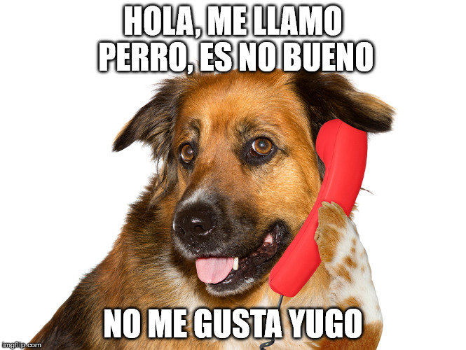 Dog On The Phone | HOLA, ME LLAMO PERRO, ES NO BUENO NO ME GUSTA YUGO | image tagged in dog on the phone | made w/ Imgflip meme maker