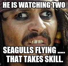 Jack Sparrow WAT | HE IS WATCHING TWO SEAGULLS FLYING ..... THAT TAKES SKILL. | image tagged in jack sparrow wat | made w/ Imgflip meme maker