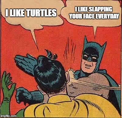 Batman Slapping Robin Meme | I LIKE TURTLES I LIKE SLAPPING YOUR FACE EVERYDAY | image tagged in memes,batman slapping robin | made w/ Imgflip meme maker