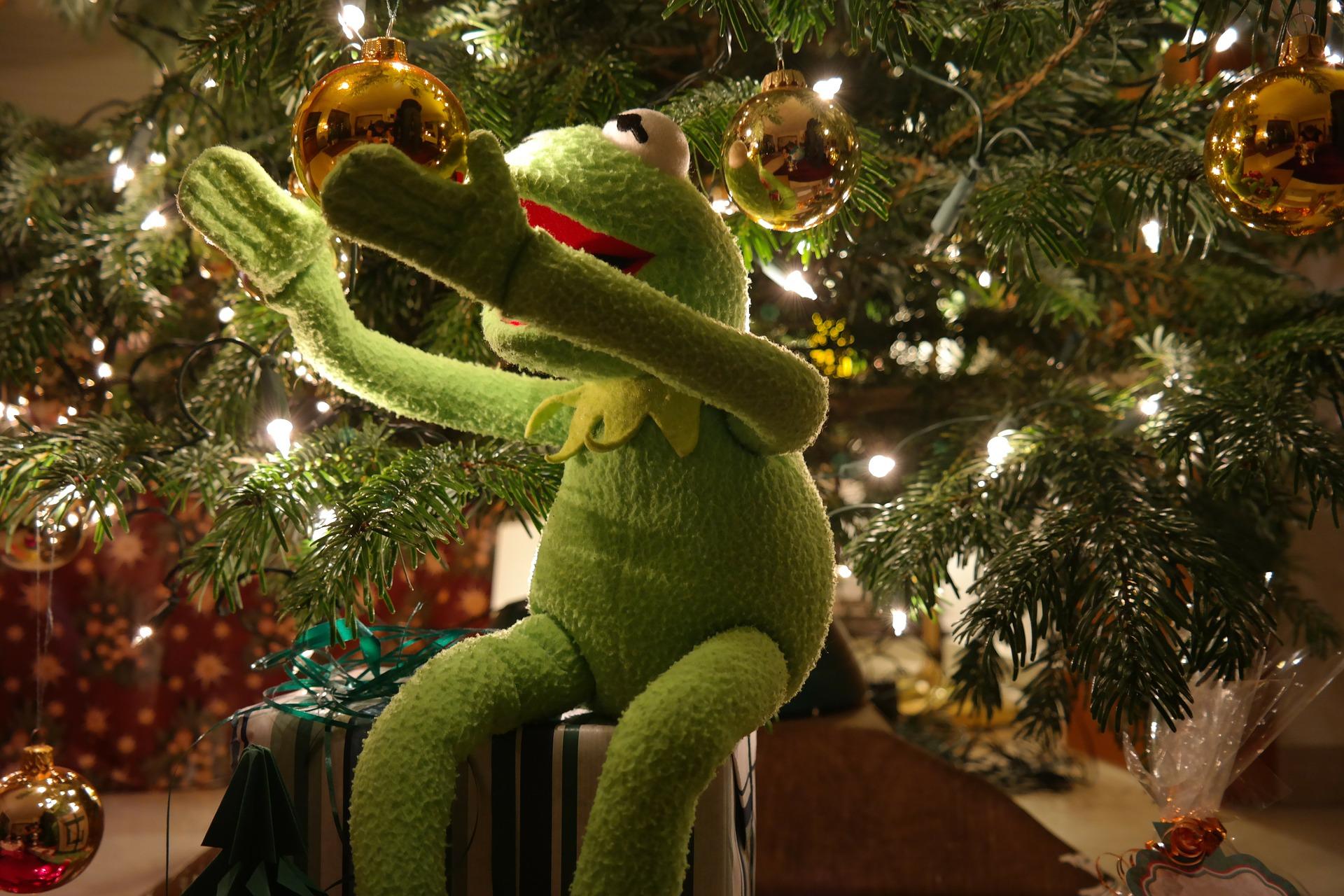 kermit christmas ball Blank Template - Imgflip