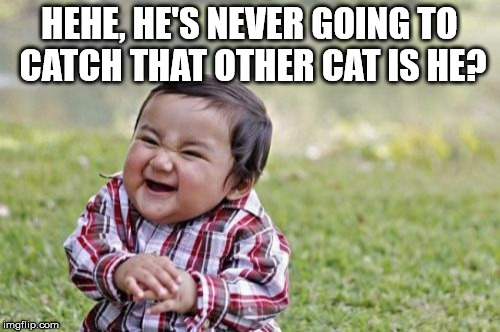 Evil Toddler Meme | HEHE, HE'S NEVER GOING TO CATCH THAT OTHER CAT IS HE? | image tagged in memes,evil toddler | made w/ Imgflip meme maker