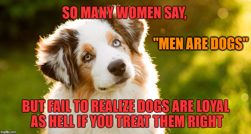 "Relationship Advice | SO MANY WOMEN SAY, BUT FAIL TO REALIZE DOGS ARE LOYAL AS HELL IF YOU TREAT THEM RIGHT ""MEN ARE DOGS"" 