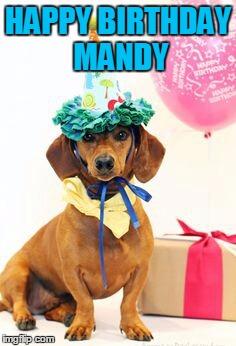 1dl3a9 dachshund birthday imgflip