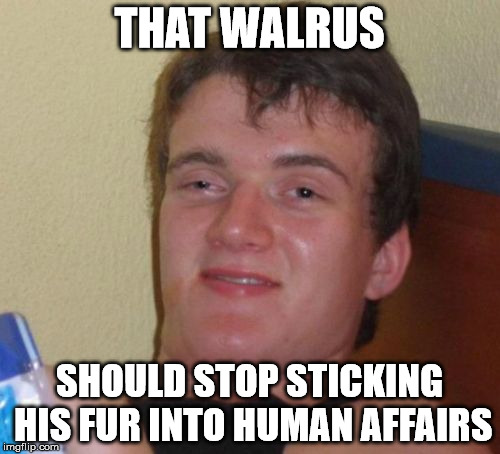 10 Guy Meme | THAT WALRUS SHOULD STOP STICKING HIS FUR INTO HUMAN AFFAIRS | image tagged in memes,10 guy | made w/ Imgflip meme maker