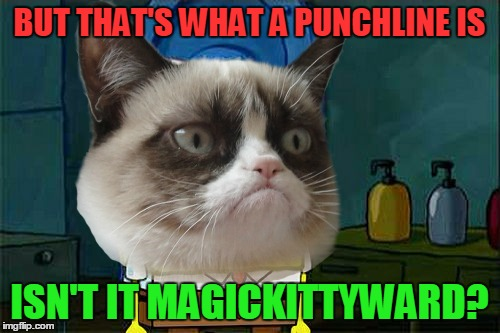 BUT THAT'S WHAT A PUNCHLINE IS ISN'T IT MAGICKITTYWARD? | made w/ Imgflip meme maker